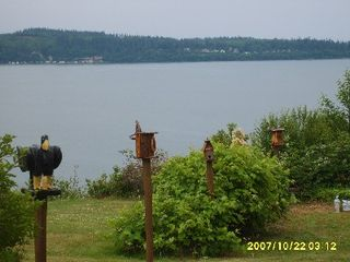 Camano Island house photo - Hand made birdhouses line the property