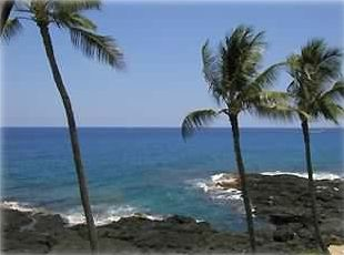 Kailua Kona studio rental - This is the view from Lanai. Community deck area to the right. Ocean entry.
