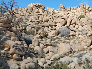 Yucca Valley house photo - Great high desert hiking and exploring awaits.