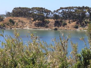 Carlsbad condo photo - Lagoon just outside the Gate