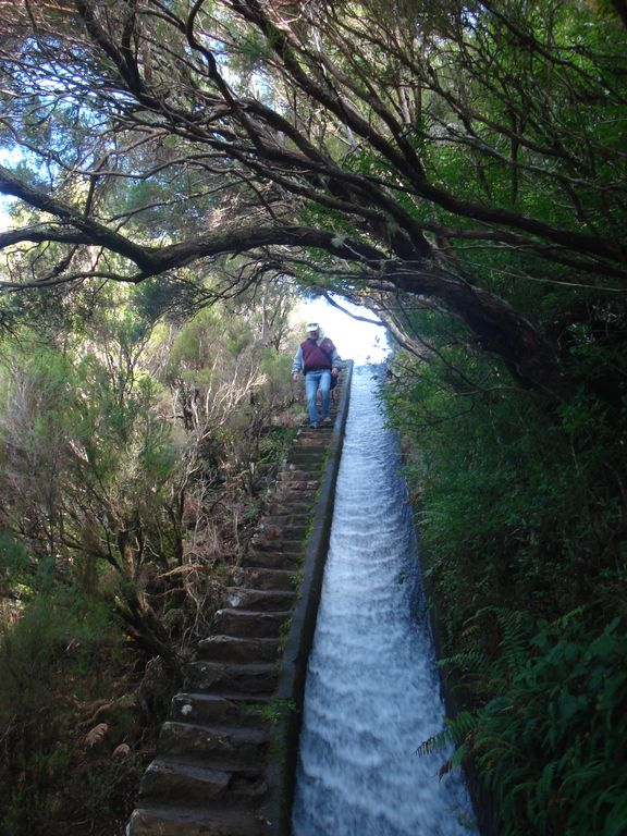 Beautiful levada walks