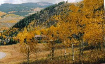 Eagle Point chateau / country house rental - Chateau MountainVail when the Aspen Trees Turn X-tra Beautiful during the Summer