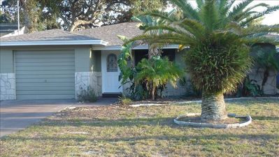 Front yard with beautiful palm trees, fresh paint, roof, new front door, parking