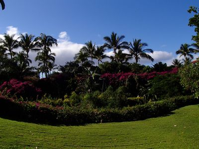 a sample of the beautiful landscaping on the grounds of Ekahi.