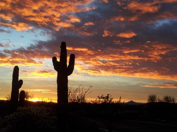 Mesa house rental - Great Sunsets, City Lights and Mountain Views From Your Private Resort