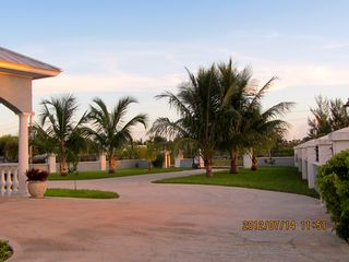 Grand Bahama Island villa photo - Coconut Trees Driveway