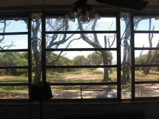 Jekyll Island cottage photo - Ocean view from living room.