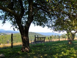 Boone estate photo - Meditation/Picnic area ... scenic mountain overlook!