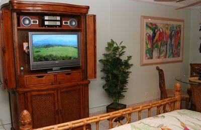 The entertainment center can be viewed from the lanai and bed.