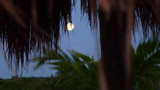 Tulum condo photo - Watch the sun rise, the sun set and the moon at night.