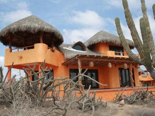 Todos Santos house photo - Indigenous Vegetation