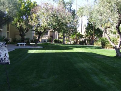 Scottsdale condo rental - Interior yard/pond.