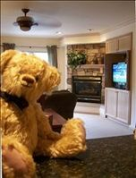 VRBO Bear on  granite countertop with HDTV, fireplace, ceiling fan in livingroom