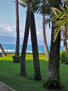 Tropical views, ocean breezes, only a few paces from the condo's entrance.