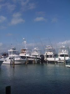 Boats at Marina