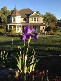 Auburn house rental - A Victorian Retreat on a piece of paradise. Come away from it all for some R&R