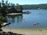 kayak right from our beach or dock