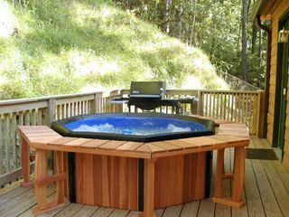 Bryson City cabin photo - 6-person hot tub and propane grill on back porch
