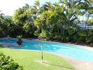 Enjoy the tropical setting and pool and spa. - Diamond Head house vacation rental photo
