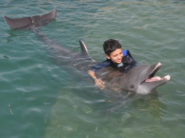 Swim with the dolphins! Hawks Cay Resort is the only hotel or resort to offer it