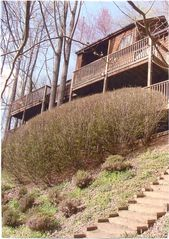 Asheville house photo - From back yard looking at decks