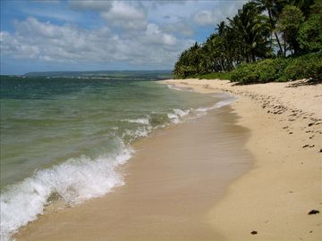 "Mokuleia house rental - ""How many times do you have a whole beach to yourselves?"" (happy renter)"
