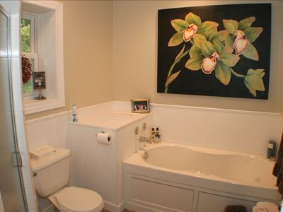 Harbor Springs cottage rental - Master Suite Bath