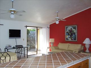 Cabo San Lucas condo photo - Large open living area that opens up to a private sunny patio area