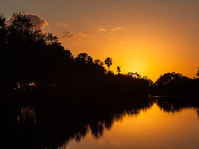 Tarpon Springs house rental - Howard Park Sunset - ©Brad Styron