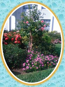 Bonita Springs condo rental - Beautiful floral front entrance
