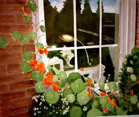 Belfast apartment photo - Painting of window box filled with nasturiums in front of shop.