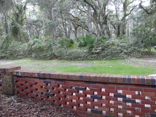 Jekyll Island house photo - Driftwood landscape feature in fromt of house