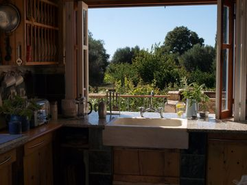 View from fully equipped kitchen into orchard