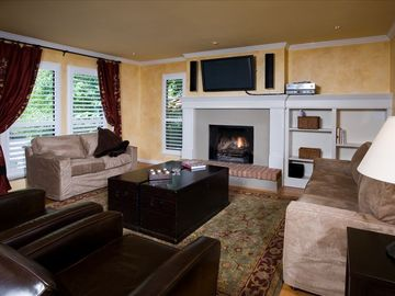 Aspen condo rental - Living Room - With pull out couch