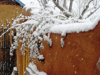 Albuquerque cottage photo - Winter view