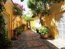 San Miguel de Allende Apartment Rental Picture