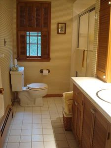 Oostburg cottage rental - bath with tub and shower