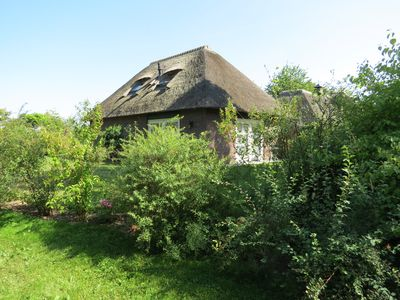 Centrally located thatched cottage in rural area - De Bosuyl