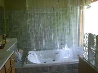 Port Sanilac house photo - master bathroom