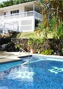 Kailua Kona house rental - Swim with the turtles in our large warm pool