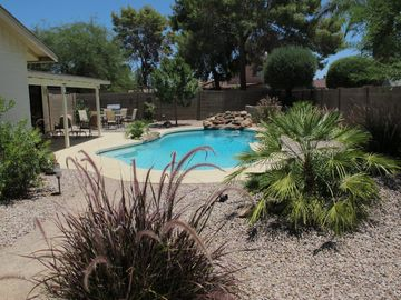 Tempe house rental - Private Pool