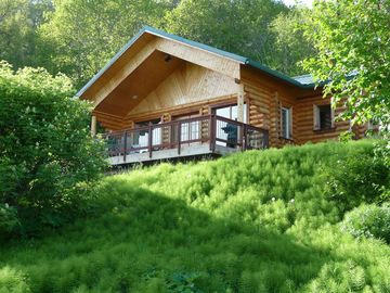 Homer cabin rental - The Twin Puffins