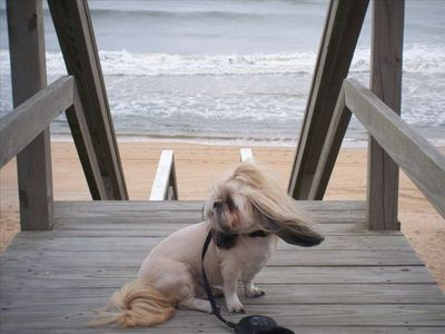 CoCo enjoying the Ocean Breeze on the Private Community Boardwalk!