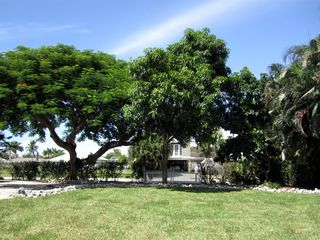 Vacation Homes in Marco Island house photo - Large landscaped backyard with beautiful trees!