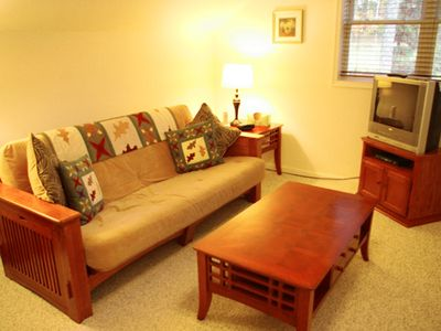 Berkeley Springs house rental - Den