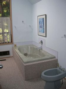 Master Bath soaking jetted tub and bidet