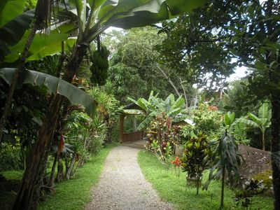 Dominical cottage rental - entrance road and bridge