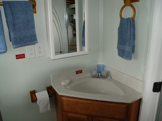 Georgetown house boat photo - Vanity sink with opening medicine cabinet.