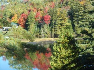 Lake Placid property rental photo - Paradox Bay on Lake Placid in the Fall.