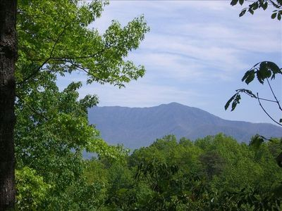 Check out Mount LeConte right off our deck, no matter what season.